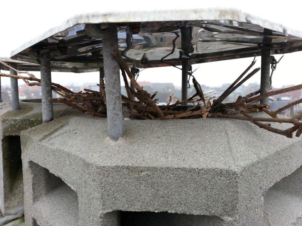 Vogelnest schoorsteenonderhoud